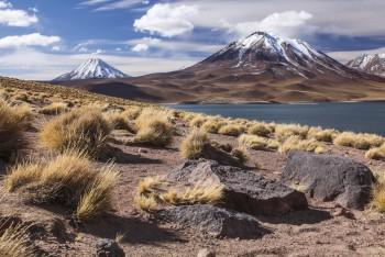 Laguna Miscanti – désert d'Atacama, Chili
