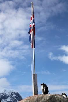 Garde à vous – Port Lockroy, Antarctique